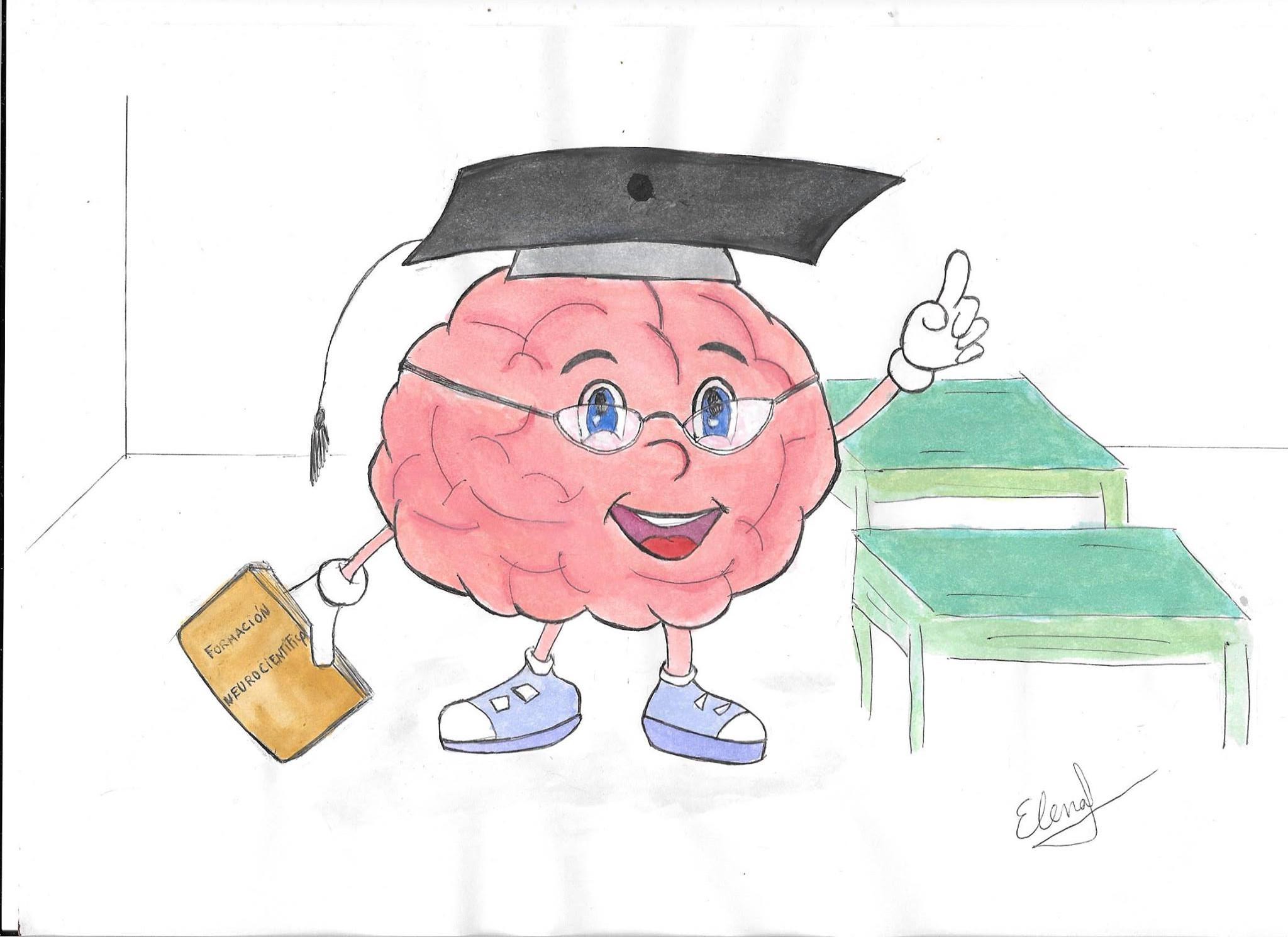 Quieres ser Neurocientífico? Mira estos cursos y programas de ...